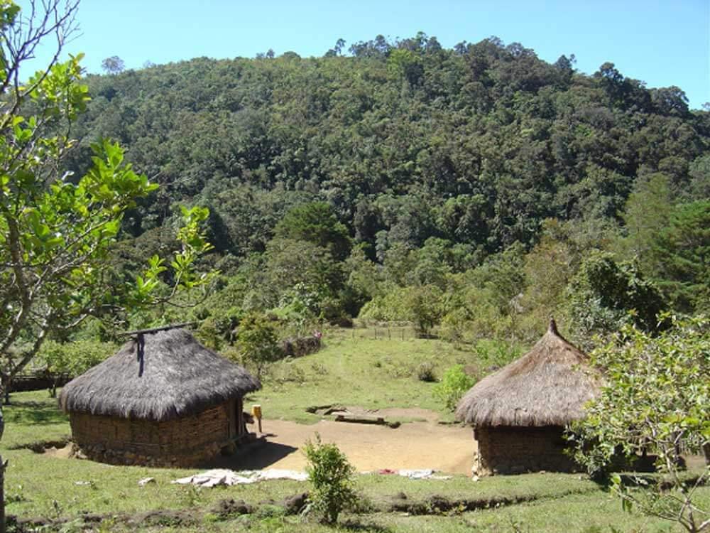 Colombia koffiebonen Houseblend