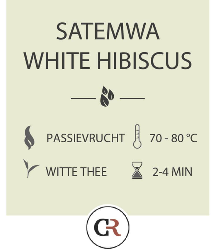 Satemwa white Hibiscus