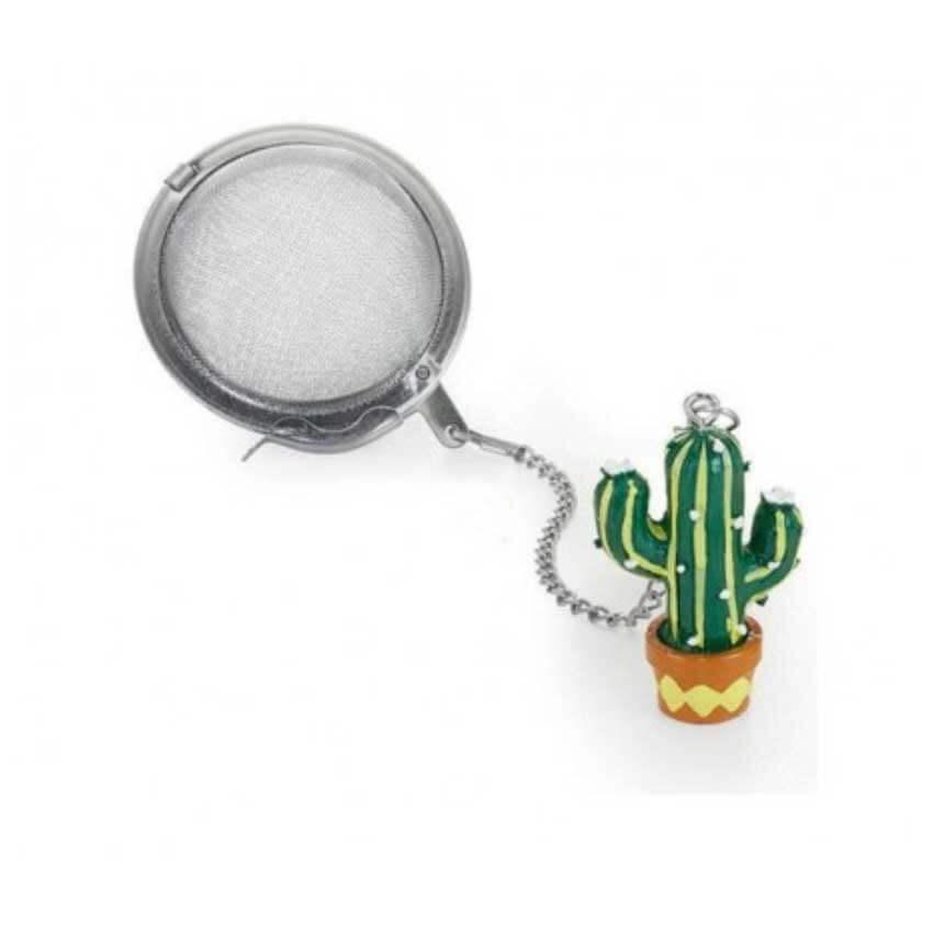 Tea Ball Cactus