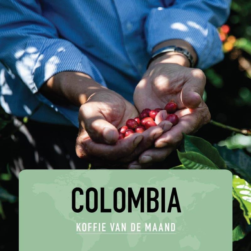 Colombia – Finca San Martin
