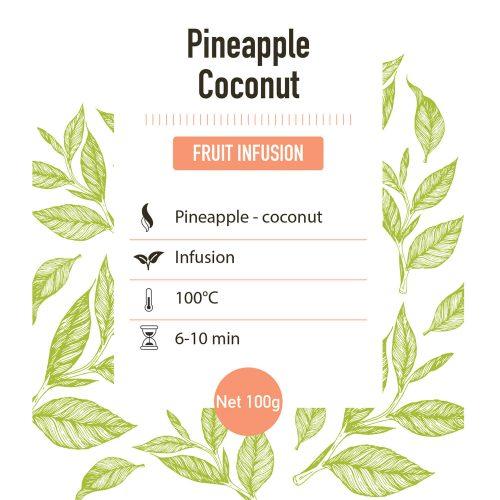 Fruit infusie – Ananas kokos – detail